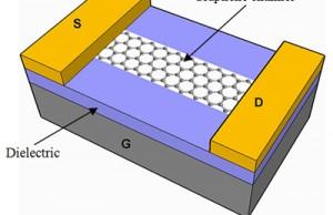 Graphene Field Effect Transistors